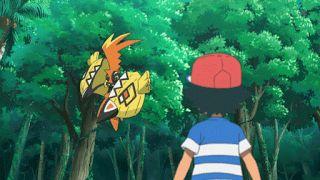 Capitulo 2 Temporada 20: ¡El reto del guardián!   pokemon xy gba download