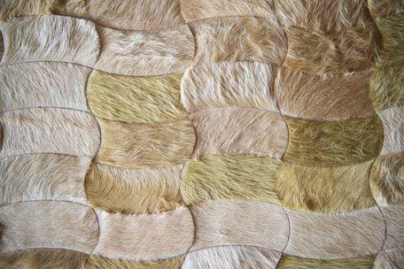 Kyle bunting hide rugs