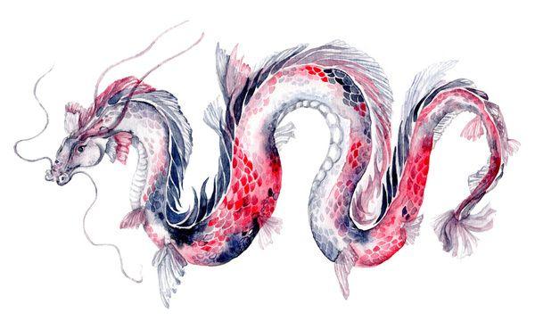 Koi Dragon Art Print