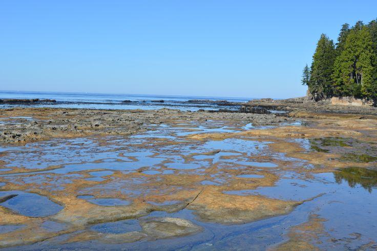 Botanical Beach Port Renfrew,BC