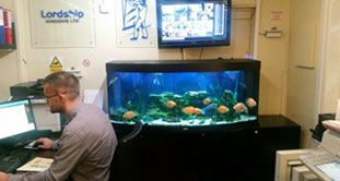 HEALTH CARE Blood pressure reduction Stress-relieving benefits Therapeutic  http://rentaquarium.co.uk/  #RentAquarium, #RentanAquarium, #AquariumLondon, #LondonAquarium, #London
