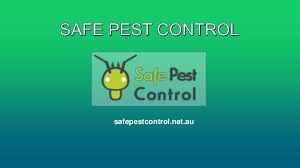 If you're looking for the best pest control in Sydney you have come to the right place. We assure you to never spot a dot in your house after you allow us to take control.