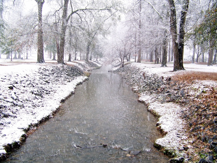 Snowing In The Park