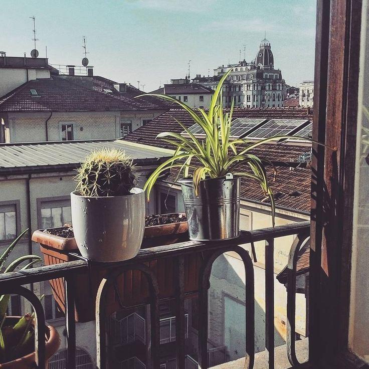 Io e le mie piante siamo soliti guardare fuori dalla finestra per delle ore, ma solo il sabato mattina. #italy #milano #city #morning #green #aov #view #igersitalia #home #interior #photography