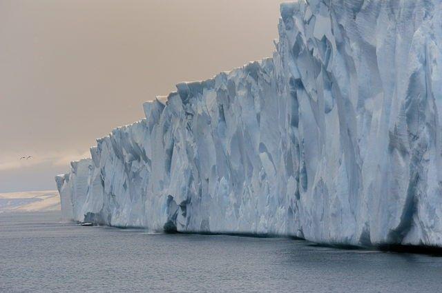 Svalbard - Natural World Safaris