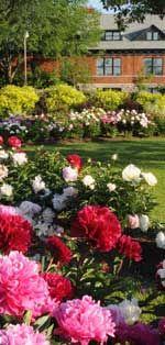 Gardens & Arboretum, Central Experimental Farm, Ottawa