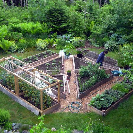 Attractive layout, though the triangular beds would be inconvenient to cover with a cold frame or row cover