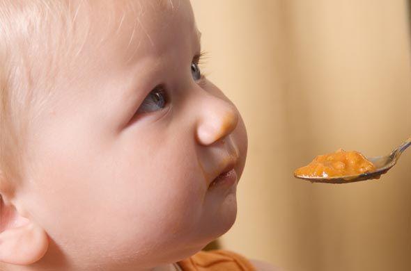 L'intemporelle pomme, poire et coing (dès 4 mois)