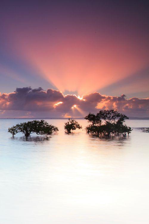Wellington Point Sunrise, Queensland, Australia