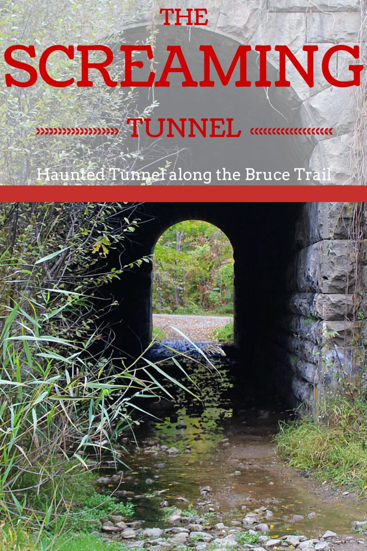 The Screaming Tunnel - A Haunted Tunnel along the Bruce Trail. Read the story behind the tunnel: http://justinpluslauren.com/bruce-trail-screaming-tunnel/ #abandoned #haunted #tunnel #ontario #canada
