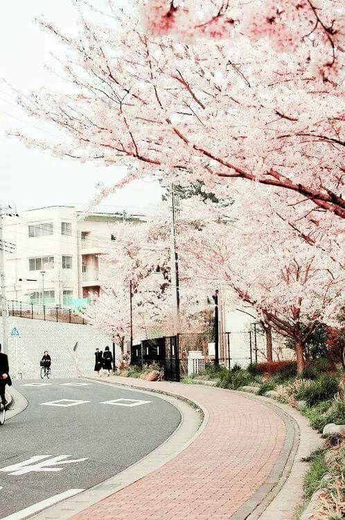 Beautiful day in Saitama, Japan