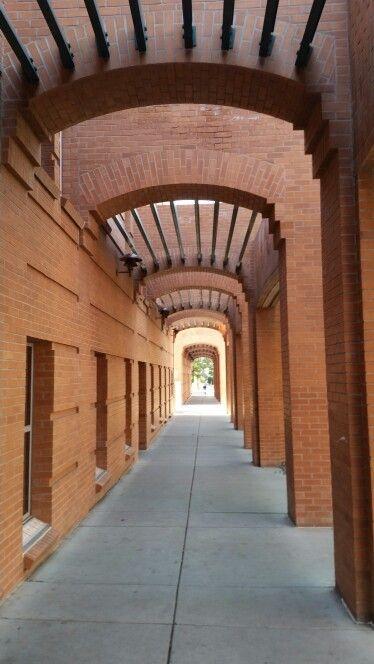 University of Arizona campus; Decoration/slideshow