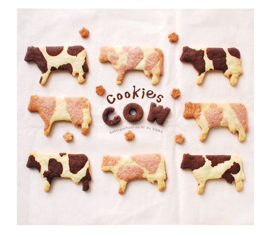 Cow cookie-baking School (lesson: learn male runners)