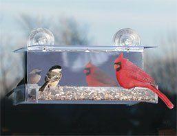 I Spy Window Bird FeederKitchens Windows, Birds Feeders, Bird Feeders, Windows Feeders, Cardinals Mirrors, Windows Birds, Mirrors Windows, 74205 Cardinals, Spy Windows