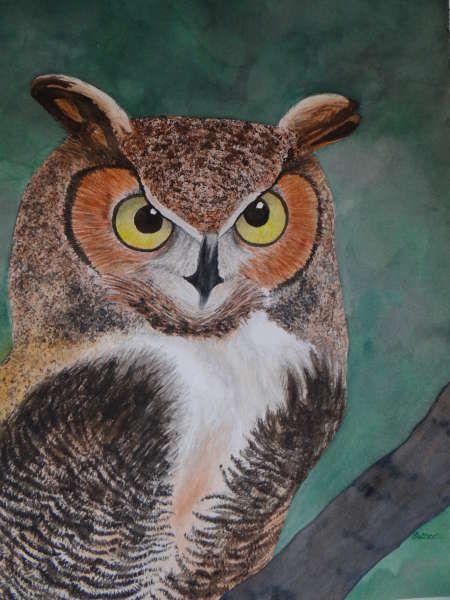 Carol Hutter - Great Horned Owl