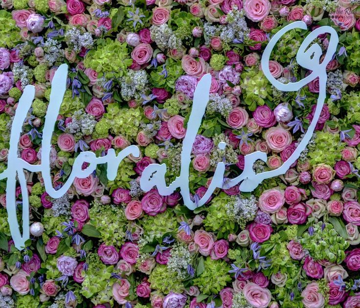 This past weekend the flower festival Timfloralis took over Victory Square in Timisoara, and by far the coolest part was a huge background with thousands of colorful flowers.