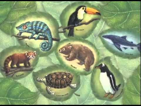 The Tree of Life consists of the five branches, or kingdoms, that classifies all living things on Earth. This introduction to biodiversity shows how each branch--Monera, Protoctista, Animals, Plants, and Fungi--live together and affect one another. Book about classification