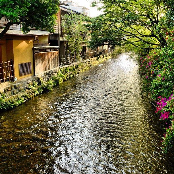 Shirakawa, Gion / 祇園・白川 | Flickr - Photo Sharing!