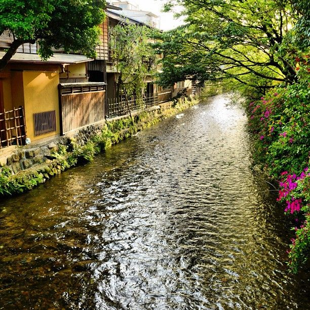 Gion, Kyoto, Japan - July 2012, at this very spot. We saw film makers taking photos of the Geisha, as in other photo. It was everything I thought it would be as in 'Memoirs of a Geisha'.