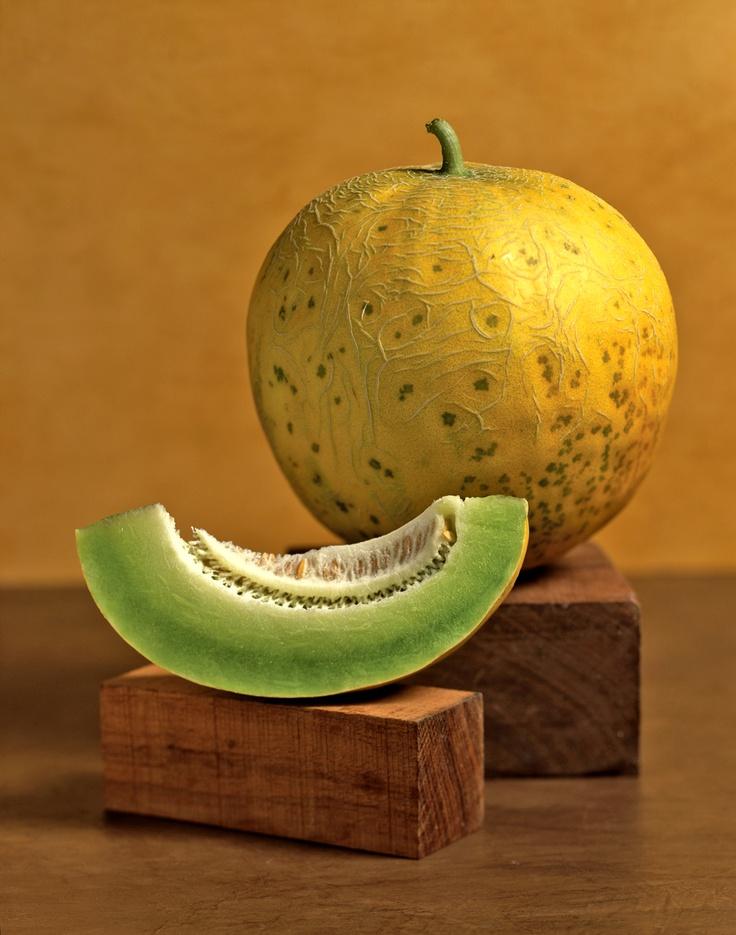 Victor Schrager Ashkhabad Melon