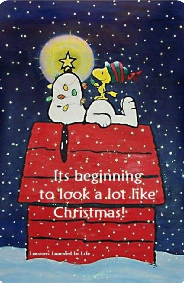 Pin By Tammy Clemans On Greetings And Salutations Snoopy Christmas Charlie Brown Christmas Peanuts Christmas