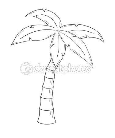 schets van de palmboom op witte achtergrond, geïsoleerd — Stockillustratie #42233267