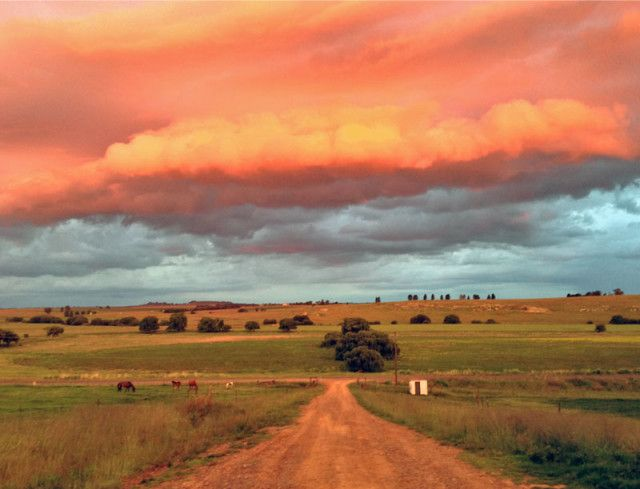 Free State sunset at the farm, South Africa