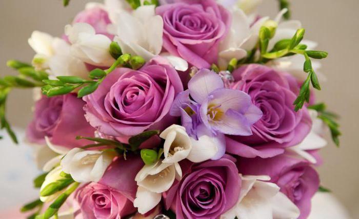 Классификация роз, характеристика групп