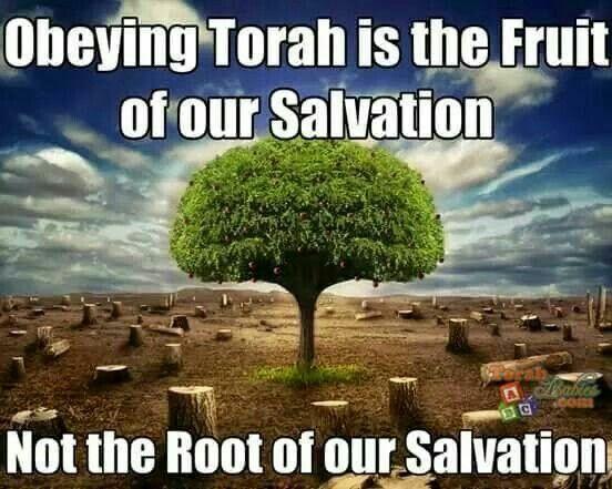Obeying Torah & Salvation