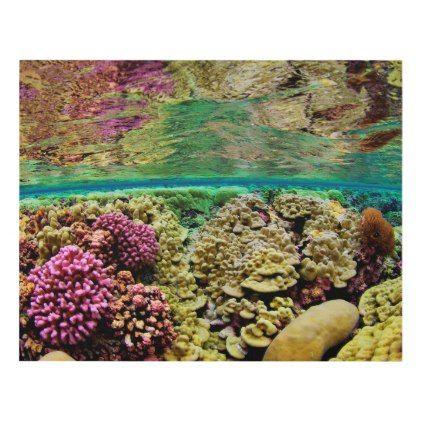 Hard Coral Carpets | Kingman Reef Pacific Ocean Panel Wall Art - ocean side nature waves freedom design