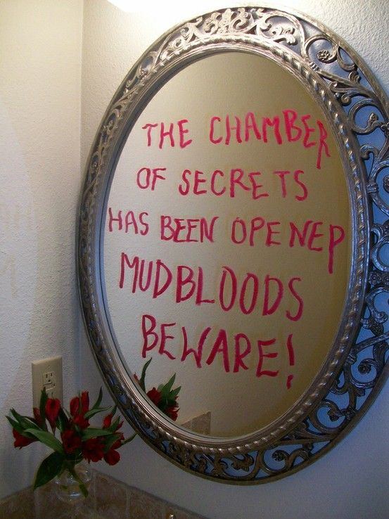 chamber of secrets mirror party decoration