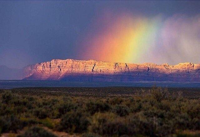 @fparizona following rainbows