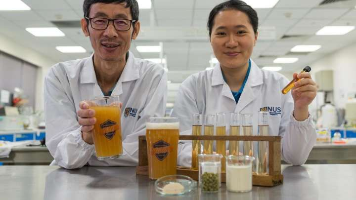 As if anyone needed any excuse to drink more beer, a team of researchers have managed to produce an alcoholic beverage that also contains probiotics. In a