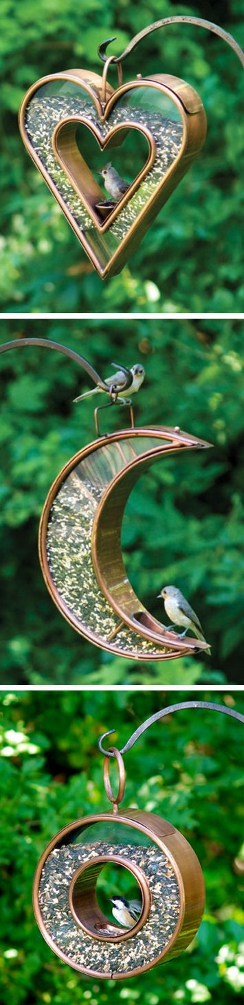 Fly through bird feeders. ♥