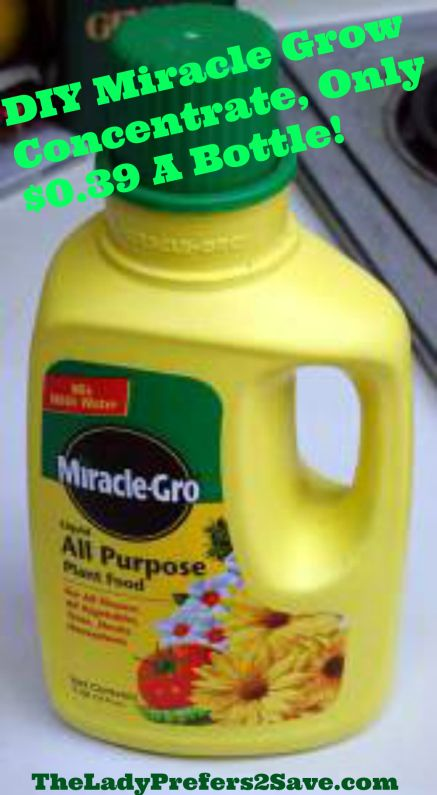 DIY MiracleGrow - •1 gallon of water •1T Epsom salts •1t baking soda •1T powdered milk •1/2t ammonia mix all ingredients together except for the powdered milk Add 1T powdered milk to each feeding, to prevent spoilage •MANUAL FEEDING Mix 2OZ of concentrate to 1 gallon wateR with 2T of powdered milk