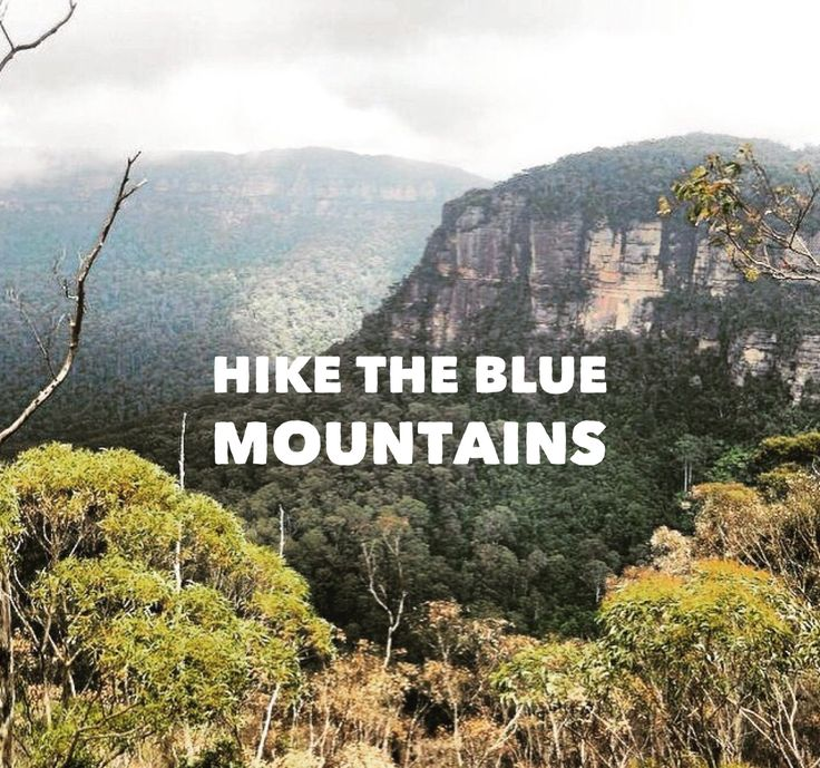 Top tips for bushwalking in Australia's spectacular Blue Mountains National Park.Check out Katoomba, Leura, or Blackheath as starting points for your adventure.