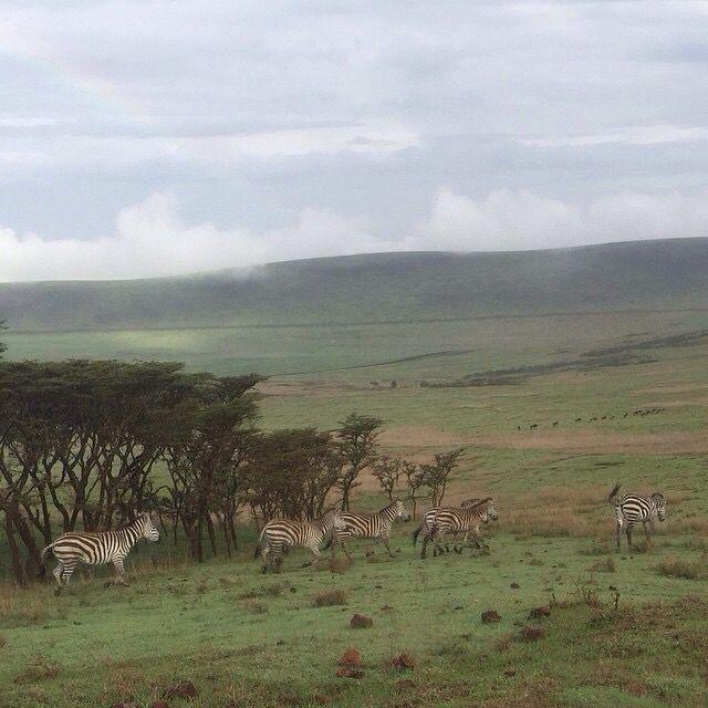 Ngorongoro crater #Tanzania#Worldwonder#Tourism