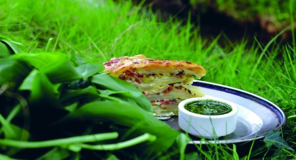 Get in the foraging groove | Irish Examiner