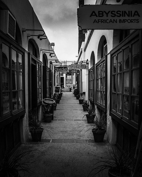 8x10 Black and White Print View Of An Alley Lined by PelliculArt