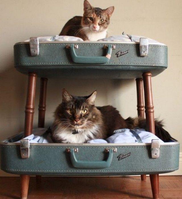 Votre chat mérite bien son propre petit lit douillet bien confortable! Voici donc notre sélection d'idées qui risquent de vous inspirer...