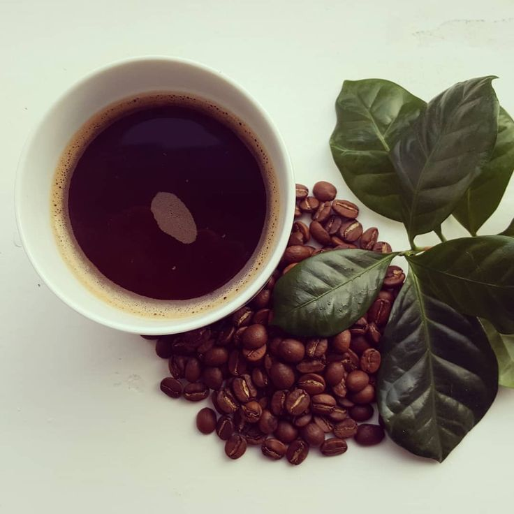 ☕ Endlich mal Bohnen aus Timor-Leste bei der gefunden 🙃 Sehen gut aus, riechen gut, schmeckt traditionell zubereitet am besten 🖤 👉 Mehr über #Kaffee in #TimorLeste auf http://bunaa.de/de/timor-leste/
