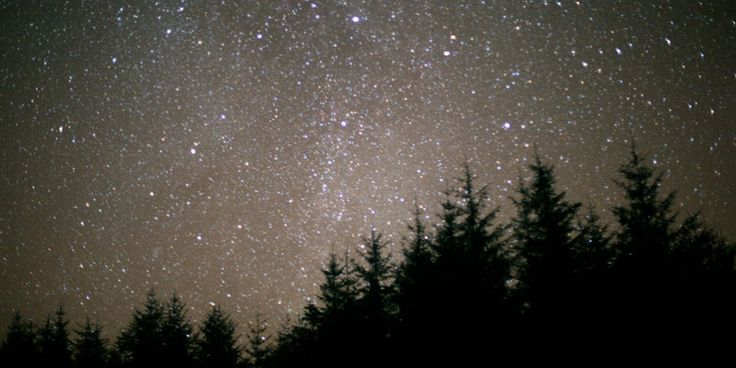 Thousands of stars visible in Scotland's Dark Sky Park at Galloway Forest Park, Dumfries & Galloway © James Hilder