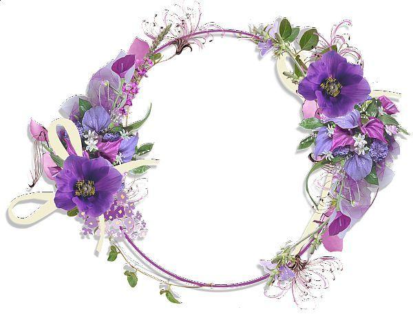 lavanda flowers - Google Search