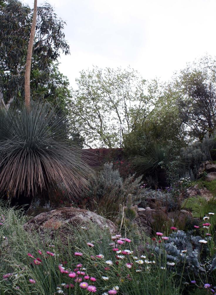 Winning Australian garden