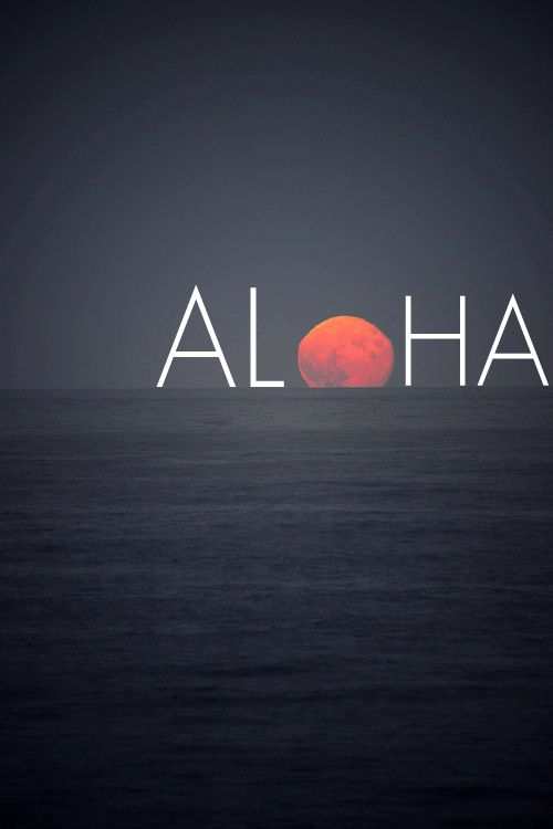 Aloha! http://www.creativeboysclub.com/ http://www.creativeboysclub.com/wall/creative