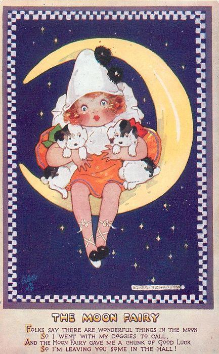 The Moon Fairy by Agnes Richardson