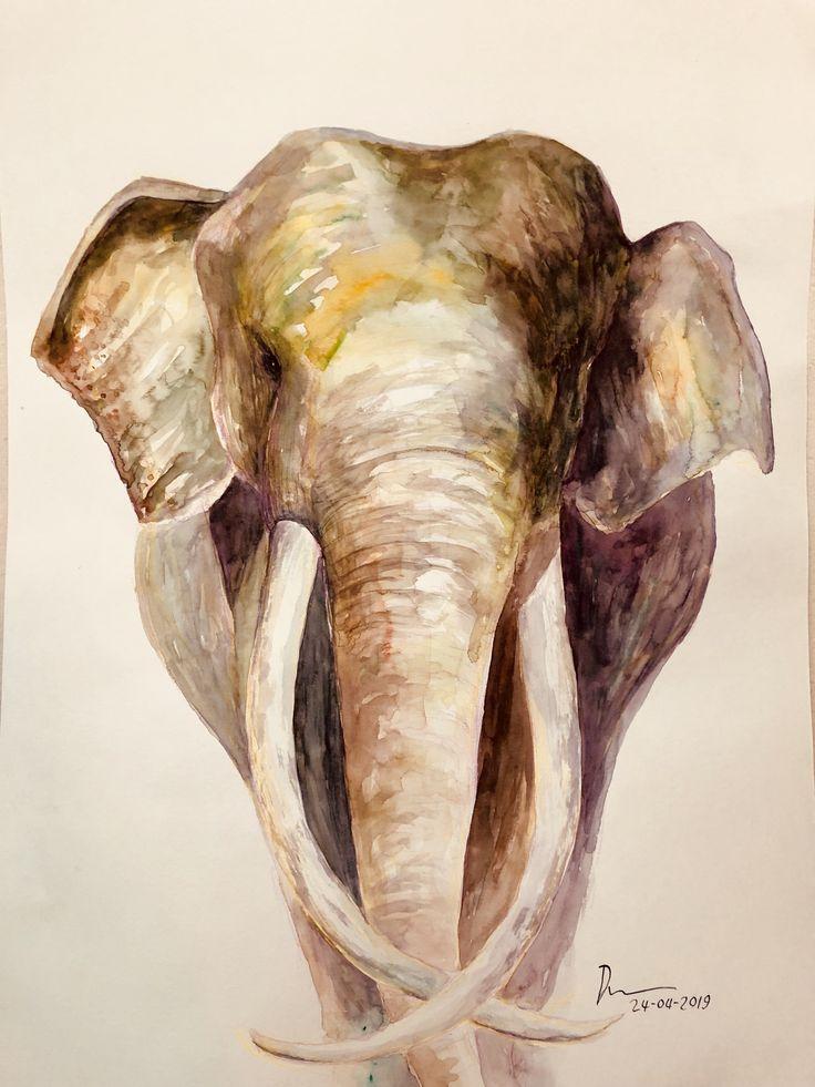 Elephant Watercolors ภาพวาด ภาพวาดส น ำ ขาวดำ