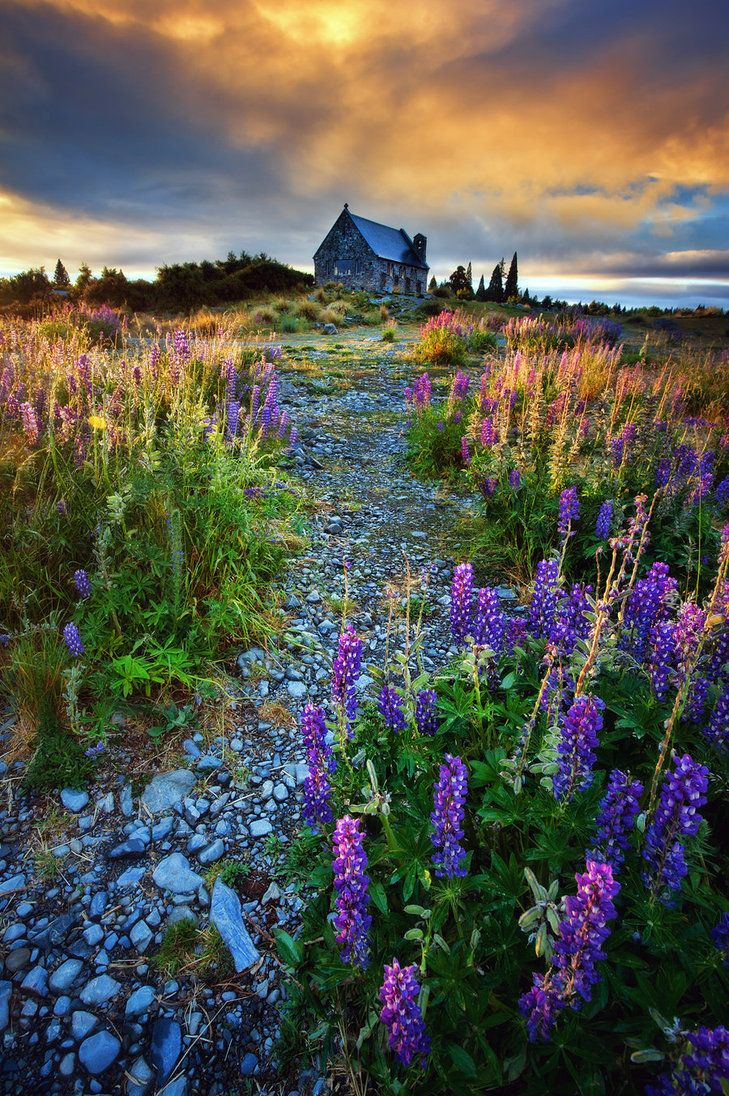 Fairyland (lake Tekapo, New Zealand) by Michaelthien http://www.etips.com/