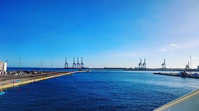 This weather.. 🌞🌊 🚲 #mitaarhus #visitaarhus #aarhusø #aarhusoe #autumn #sunny #sunday #sea #biketour  #imisssummer #blue #visitdenmark #aarhushavn #viewpoint #sallingtårnet #awesome #november #weather