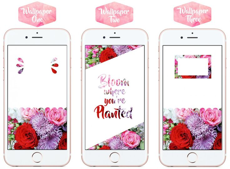 Blooming Good Wallpapers | 6 Free iPhone